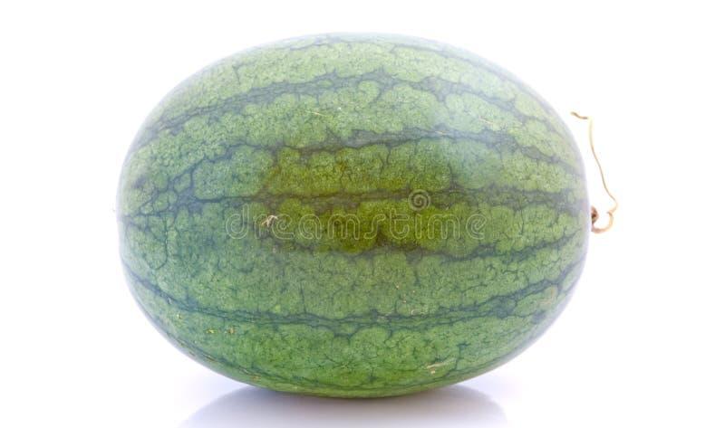 Melancia verde madura imagens de stock