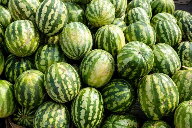 Melancias org?nicas frescas no mercado dos fazendeiros Fundo da melancia do close-up Alimento saud?vel do vegetariano imagens de stock