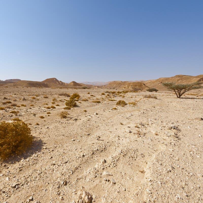 Melancolía y vacío del desierto en Israel imagen de archivo libre de regalías