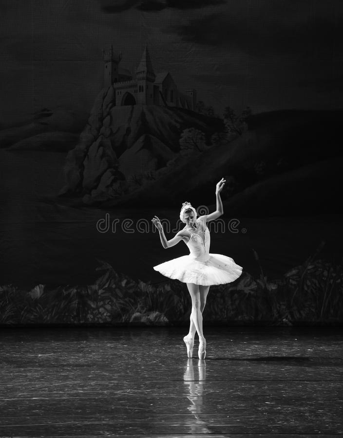 A melancolia atrasa-se no Beira do lago-bailado O Lago das Cisnes da cisne da beira do lago- fotos de stock