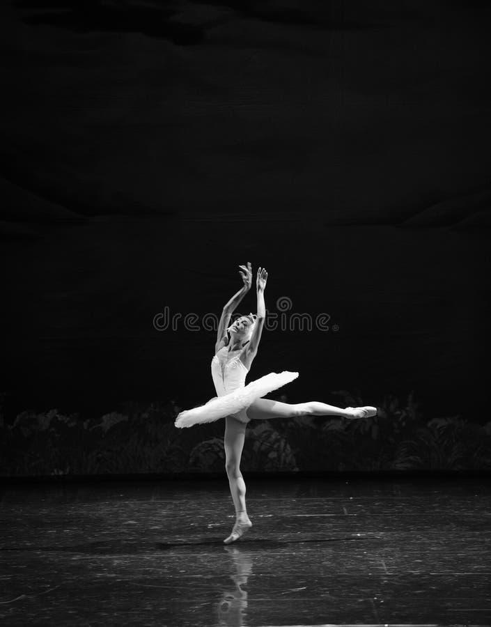 A melancolia atrasa-se no Beira do lago-bailado O Lago das Cisnes da cisne da beira do lago- fotografia de stock royalty free