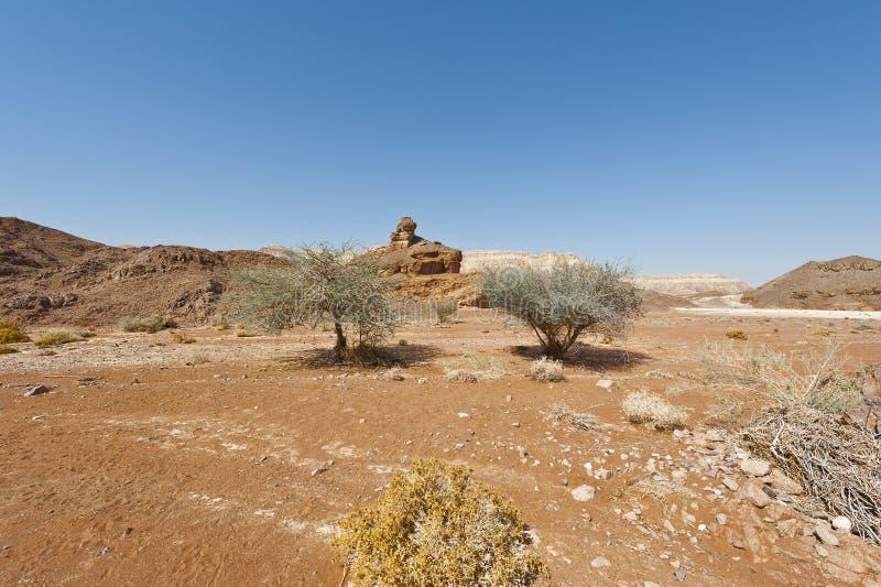 Melancolia e vazio do deserto em Israel fotos de stock