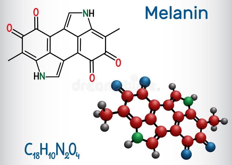 Melaninmolekyl Strukturell kemisk formel- och molekylmodell royaltyfri illustrationer