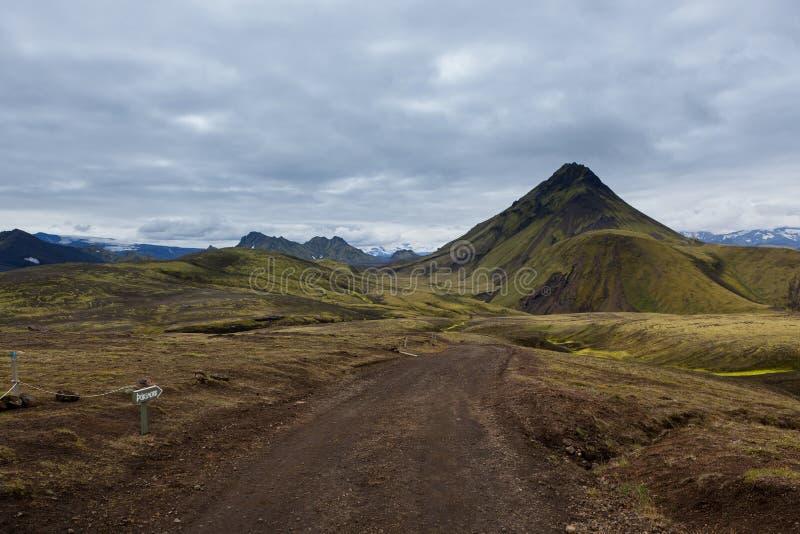 Melankoliskt Island landskap med gräsplan arkivbild