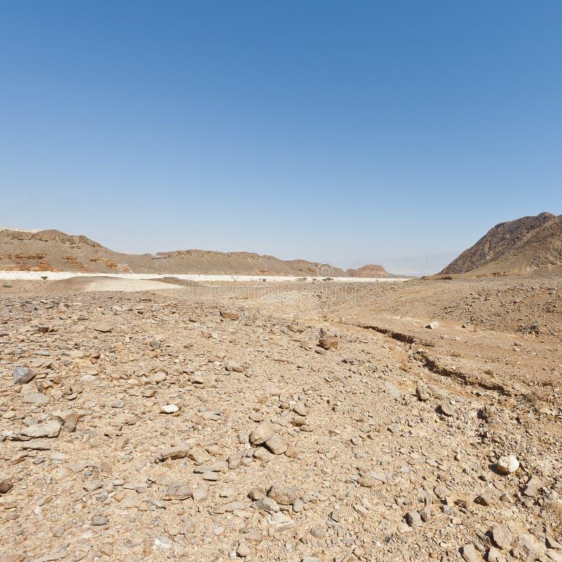 Melankoliskt och tomhet av öknen i Israel royaltyfri bild