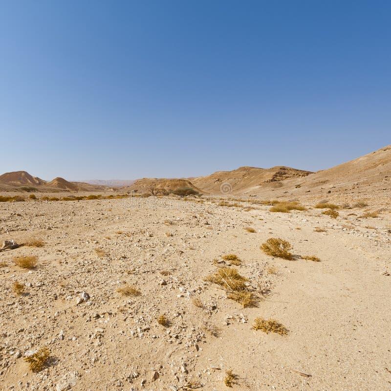 Melankoliskt och tomhet av öknen i Israel arkivfoton