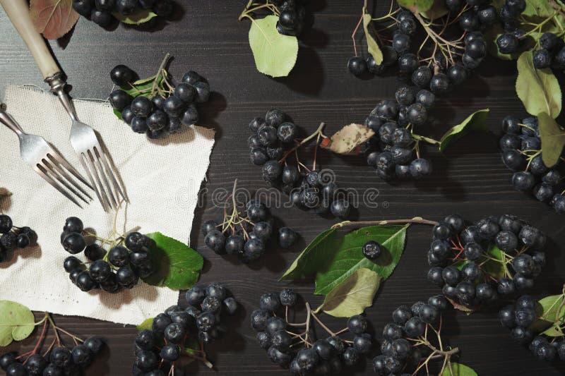 Melanocarpa van Aronia van takken zwarte chokeberry bessen op donkere lijst Autumn Pattern royalty-vrije stock foto's