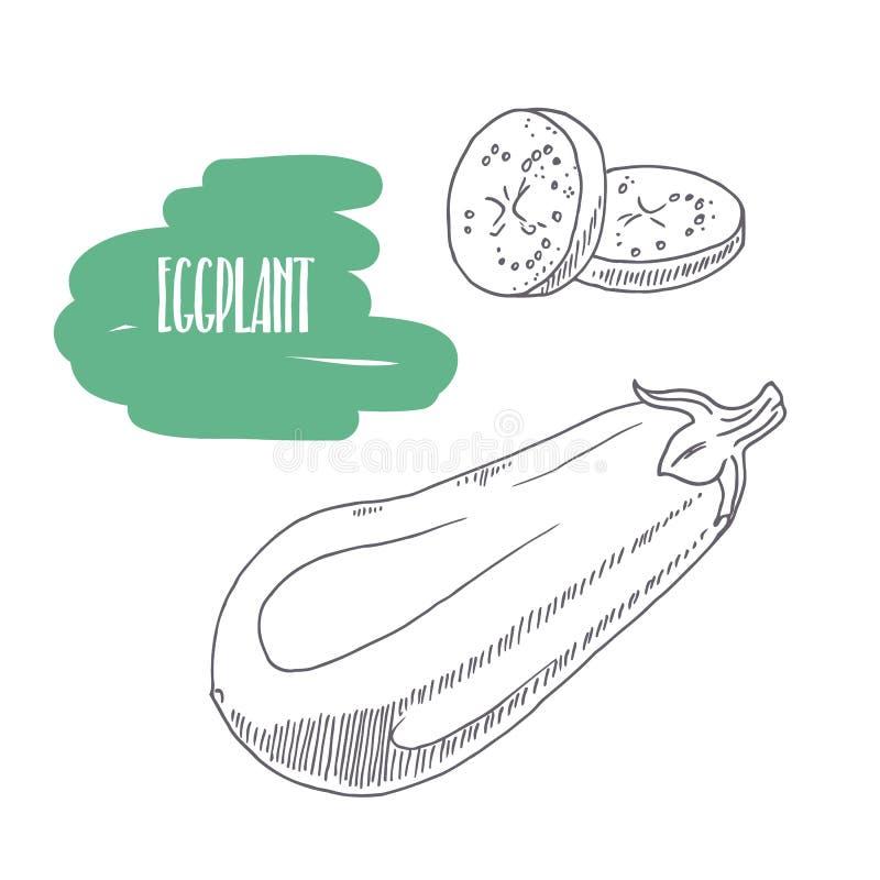 Melanzana disegnata a mano isolata su bianco Schizzi le verdure di stile con le fette per progettazione di pacchetto del mercato, illustrazione vettoriale