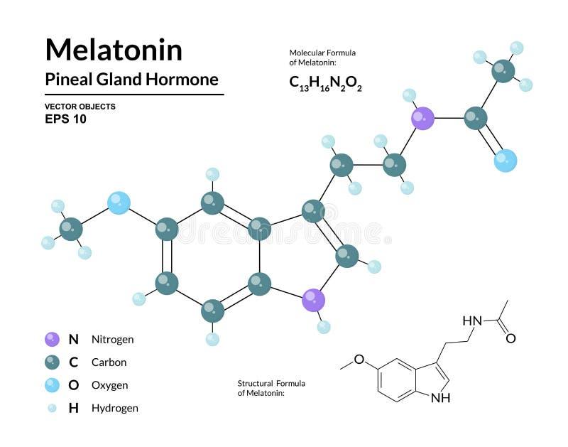 melatonin 松果体激素 昼夜节奏管理者  结构化工分子式和3d模型 库存例证
