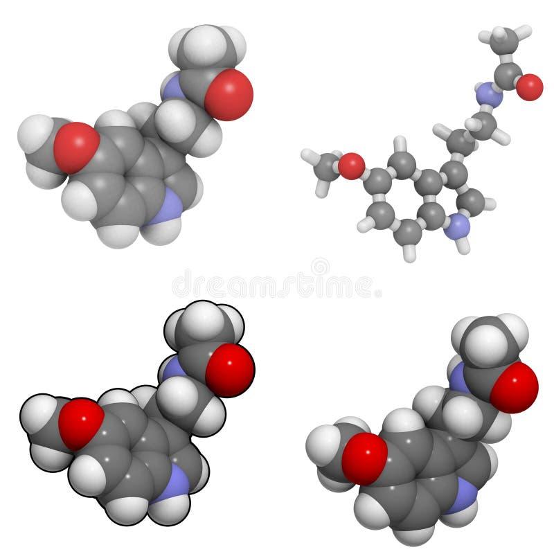 melatonin ελεύθερη απεικόνιση δικαιώματος