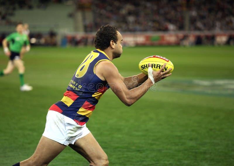 MELBOURNE - AGOSTO 21: Adeaide imagem de stock royalty free