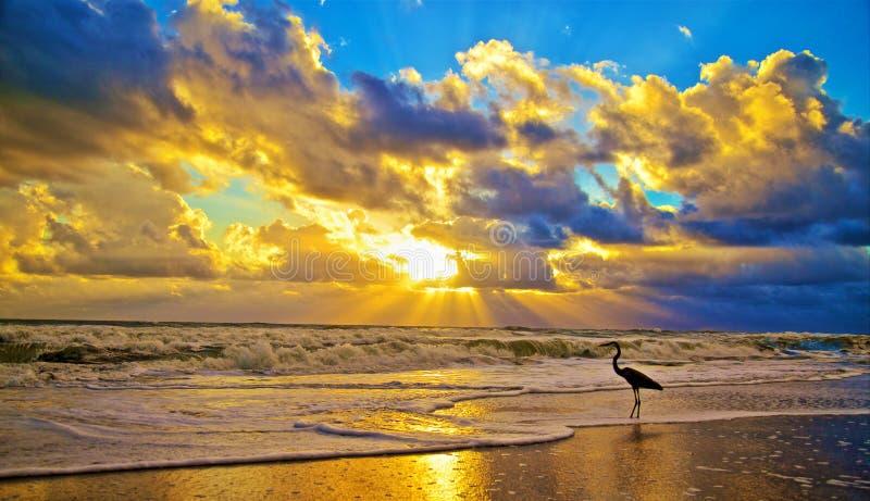 Melbourne Beach Florida sunrise royalty free stock photos