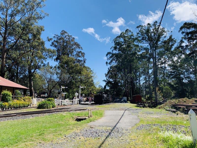 Melbourne Forest Train photo libre de droits