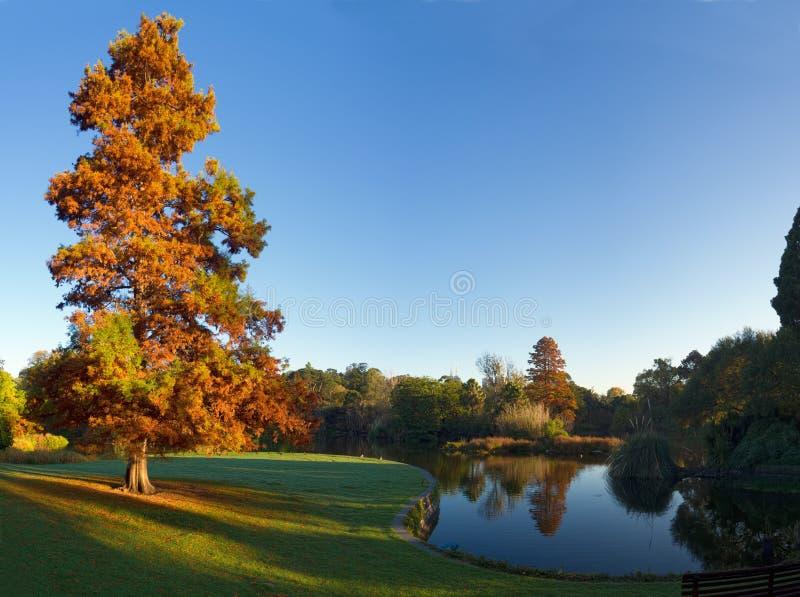 Melbourne un matin d'automne photos stock