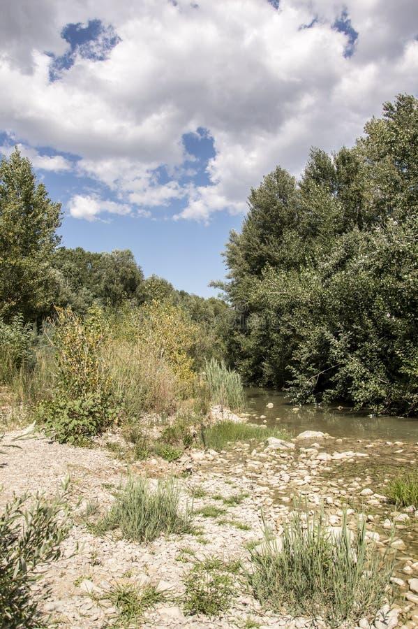 Meldola, Italia, detalle del río de Ronco fotos de archivo libres de regalías