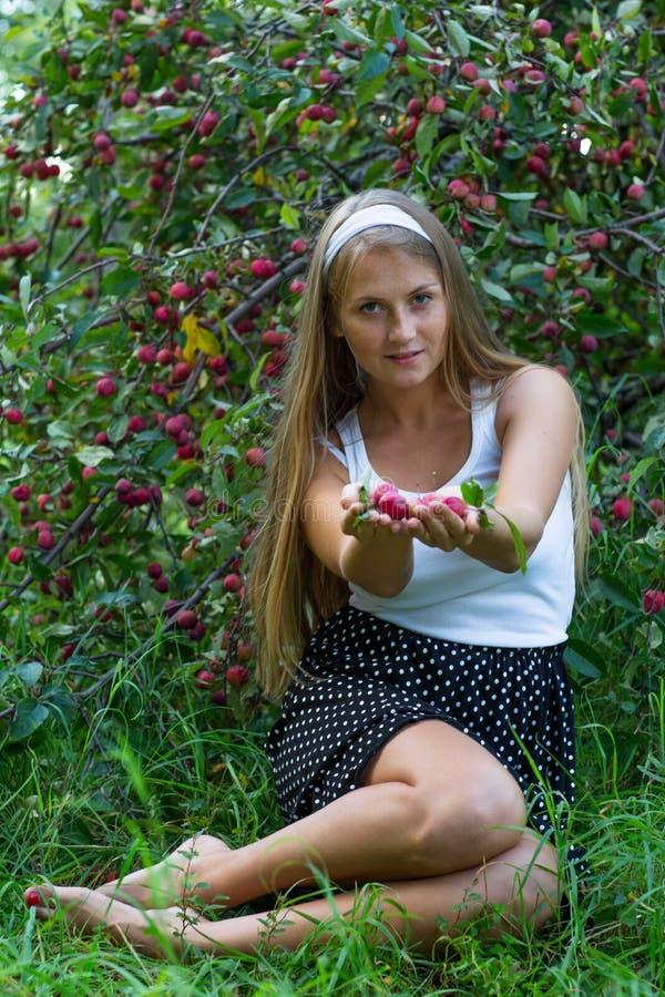 Mele d'offerta della ragazza attraente in mani fotografia stock libera da diritti