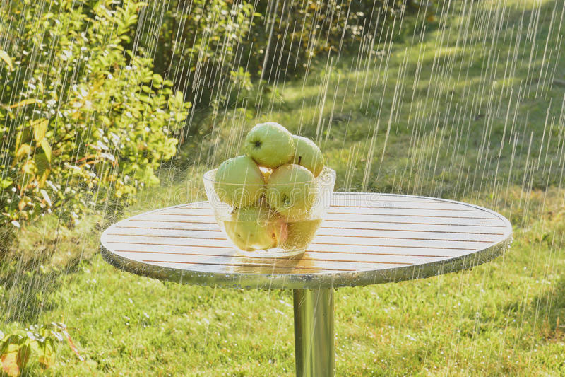 Mele e pioggia verdi di estate fotografie stock