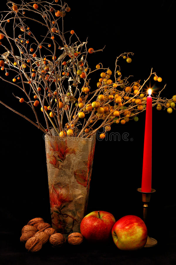 Mele, noci, bicchiere di vino e vaso dei fiori su fondo nero fotografia stock