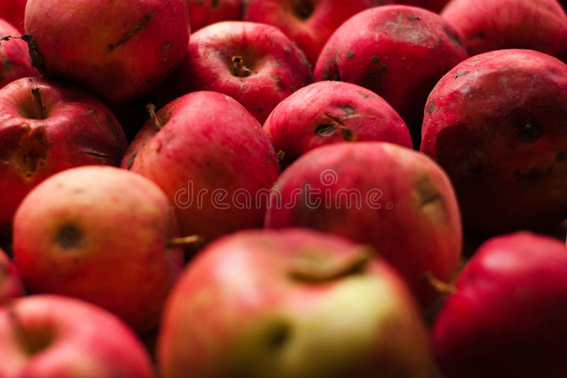 Mele rosse fresche dolci fotografia stock libera da diritti