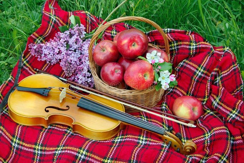 Mele rosse fresche in un canestro di vimini nel giardino Picnic sull'erba Mele e violino maturi Plaid sull'erba, mele, violino fotografia stock libera da diritti