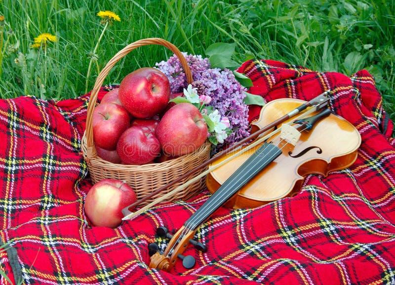 Mele rosse fresche in un canestro di vimini nel giardino Picnic sull'erba Mele e violino maturi Plaid sull'erba, mele, violino immagini stock libere da diritti