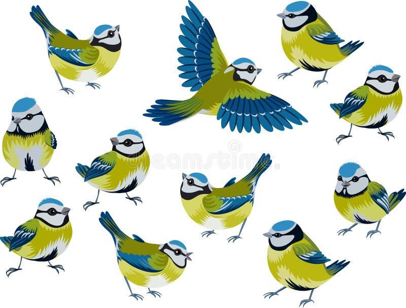 Melharucos azuis ilustração do vetor