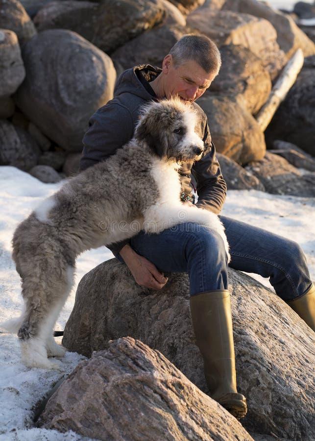 Melhor amigo do ` s do homem Ligamento com um cachorrinho imagens de stock royalty free