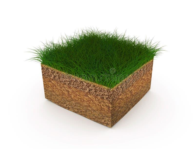 A melhoria do solo, arranjo dos gramados, ilustração uma quadriculação ilustração stock