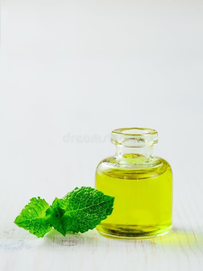 Melissa lub mennicy olej z zielonymi liśćmi, copyspace zdjęcia stock