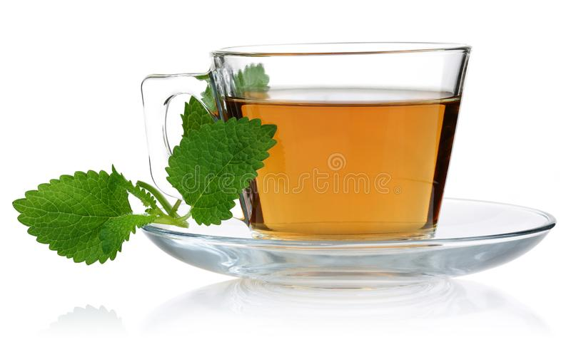 Melissa tea in a glass cup and green lemon balm leaves. On white background royalty free stock images