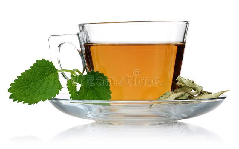 Melissa tea in a glass cup and green lemon balm. Leaves on white background stock image