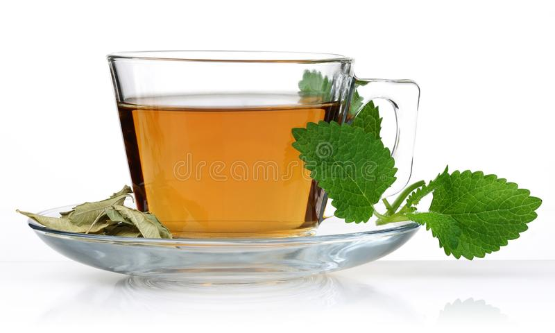 Melissa tea in a glass cup with lemon balm leaves. Isolated on white background stock photos