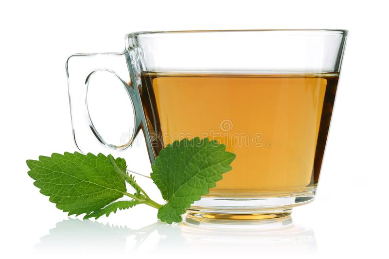 Melissa tea in a glass cup with lemon balm leaves. Isolated on white background royalty free stock photos