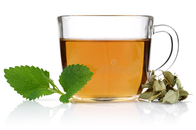Melissa tea in a glass cup with lemon balm. Leaves isolated on white background stock image