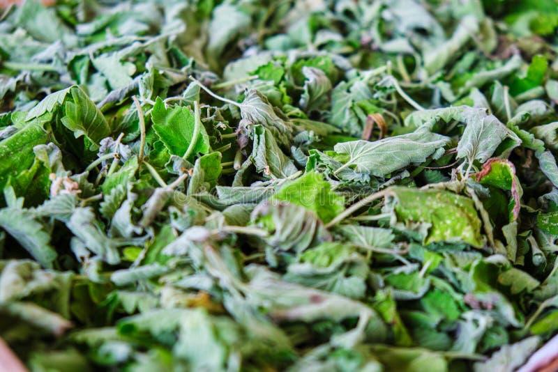 Melissen-Melissa-officinalis Blätter für den austrocknenden Tee Konzept für das Haus gemacht, Biotee, gesundes Leben stockbild