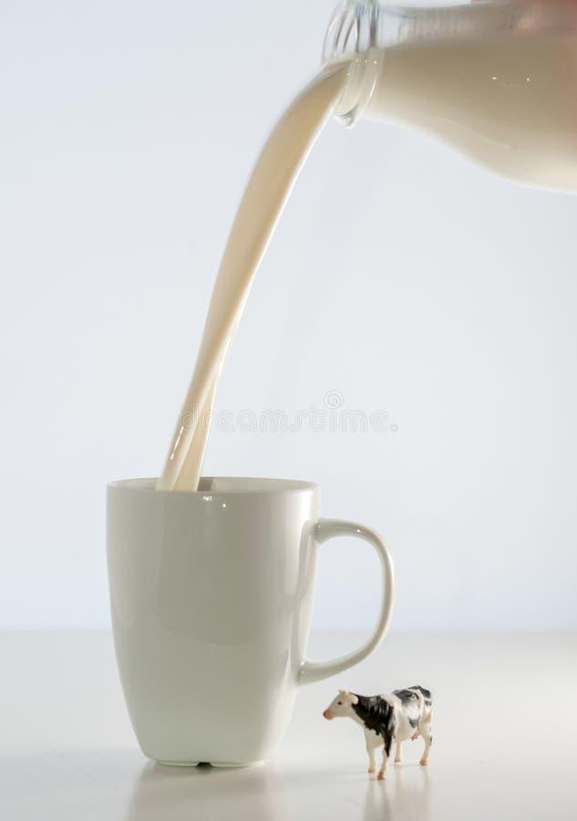 Melk en koe stock foto