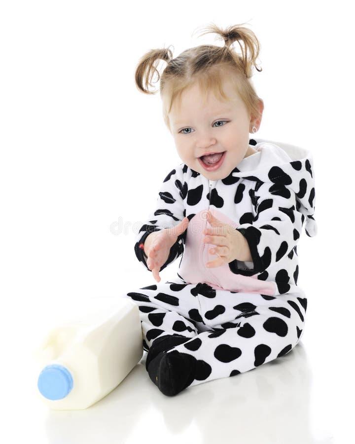 Melk-houdende van Koebaby royalty-vrije stock afbeelding