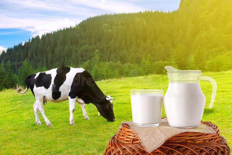 Melk in kruik en glas stock foto
