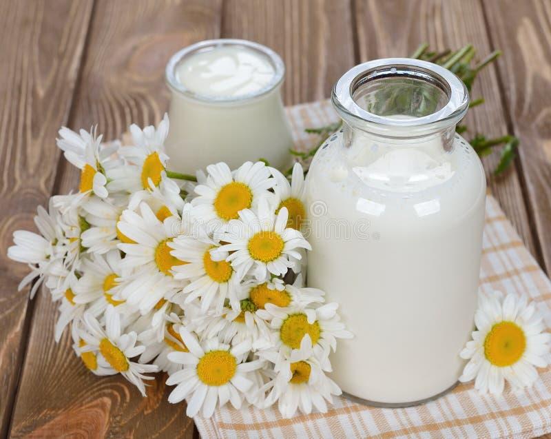 Melk, yoghurt en kamille royalty-vrije stock afbeeldingen