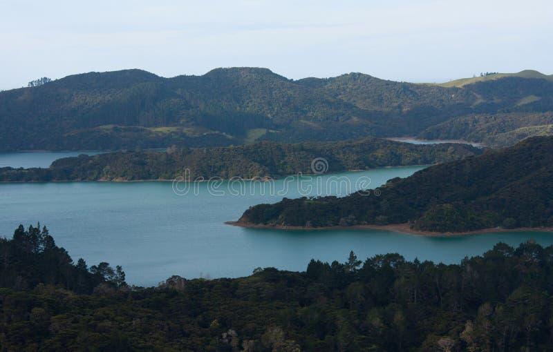 Melkachtige blauwe kleur van een overzees, met sommige die bomen in Nieuw Zeeland van een vooruitzichtpunt worden gezien stock foto's
