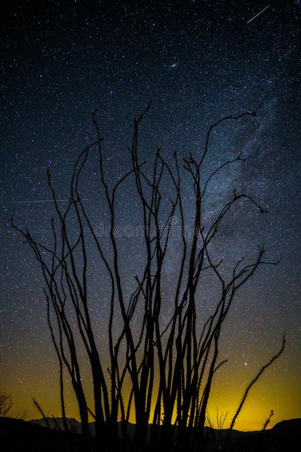 Melkachtige manier bij nacht in het Park van de de Woestijnstaat van Anza Borrego stock fotografie