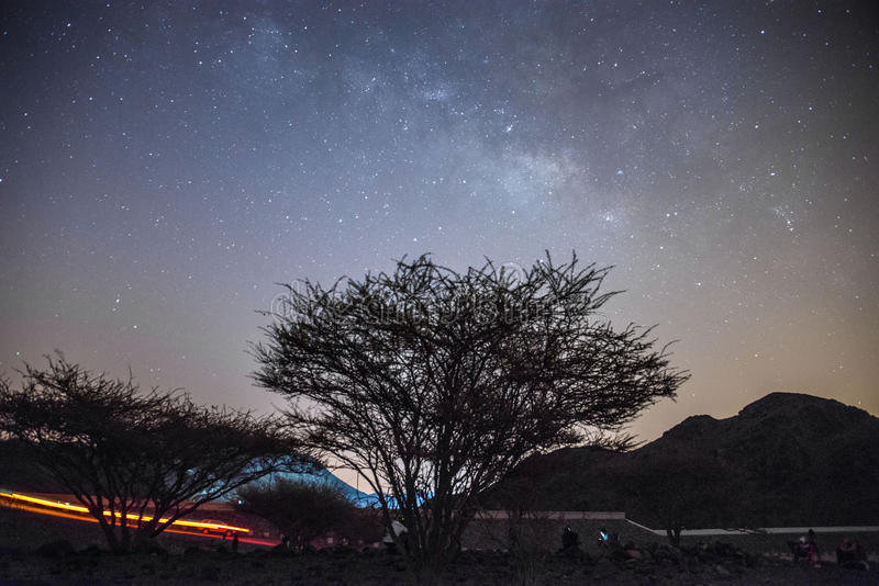 Melkachtige maniersterren in Fujairah de V.A.E stock foto