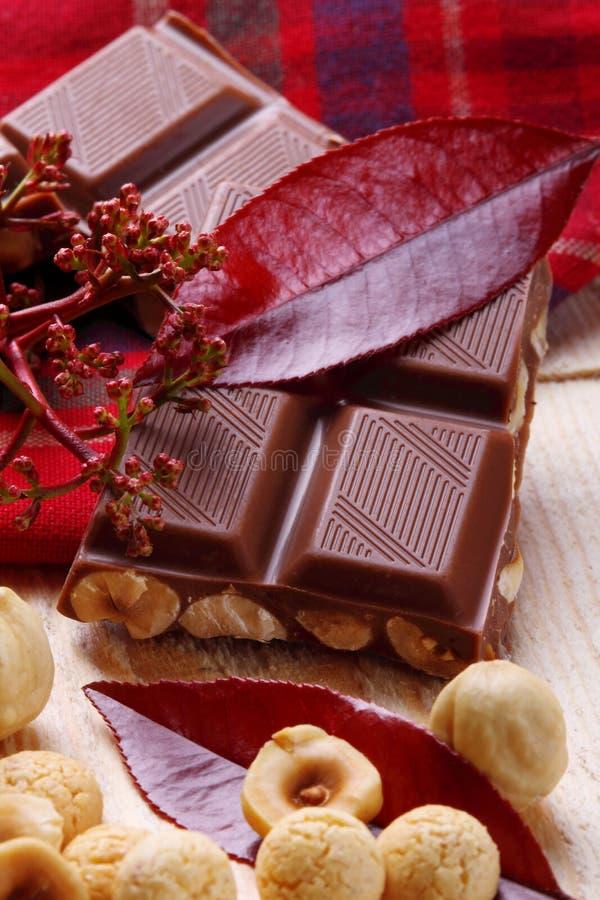 Melkchocola met hazelnoten en makarons stock foto