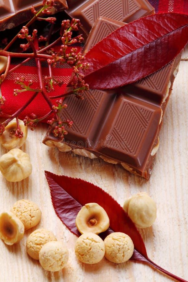 Melkchocola met hazelnoten en makarons stock afbeelding