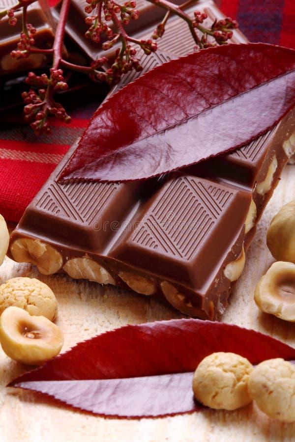 Melkchocola met hazelnoten en makarons stock foto's