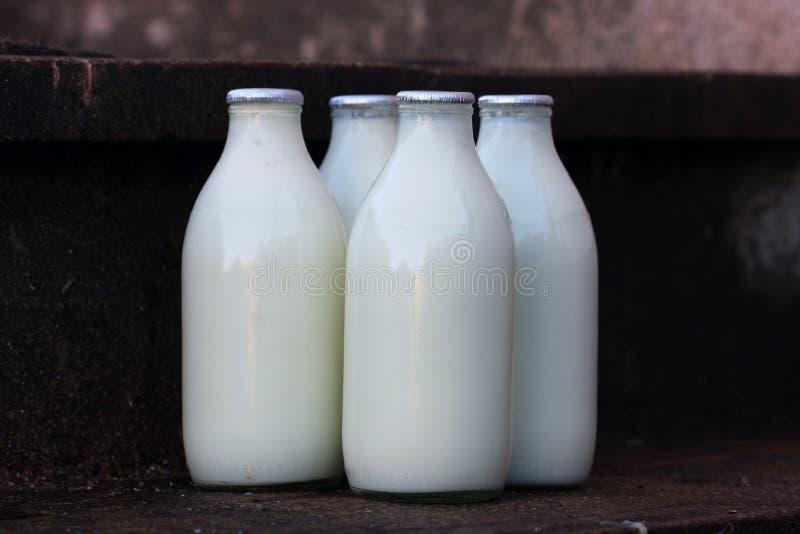 Melkflessen royalty-vrije stock afbeelding