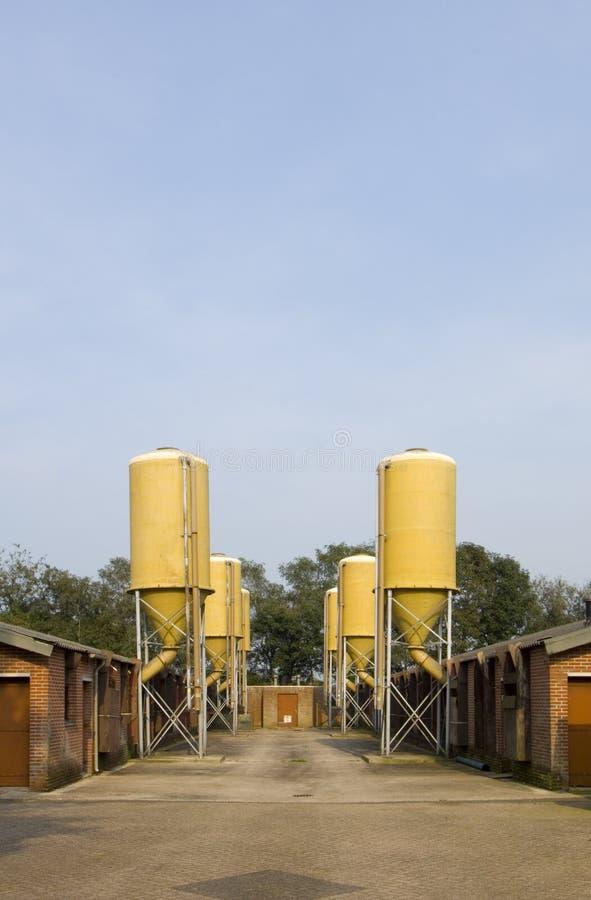 Melkveehouderij royalty-vrije stock afbeelding