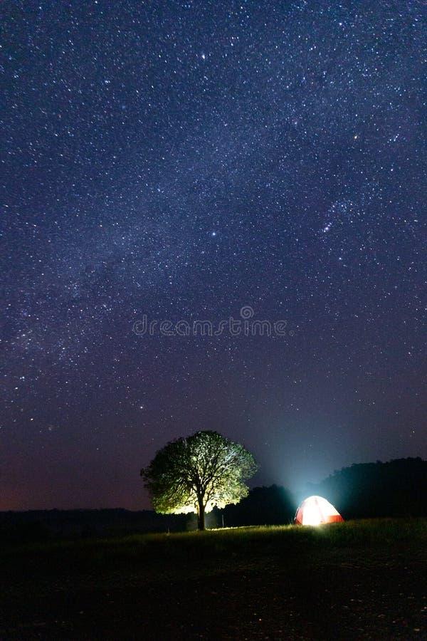 Melkweg en de oude Foto van de boom Lange blootstelling met korrel stock foto