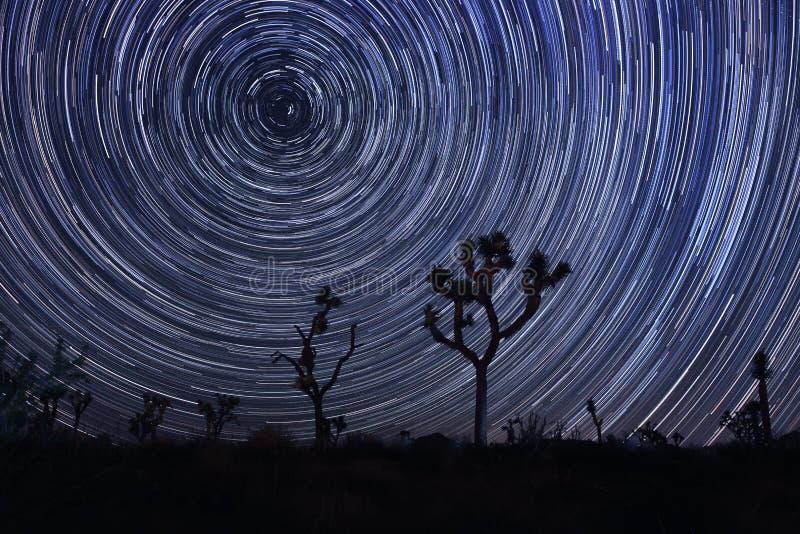 Melkweg in Joshua Tree National Park royalty-vrije stock afbeeldingen