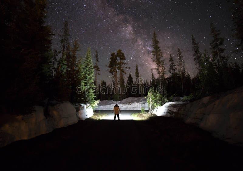 Melkwegfoto bij bos royalty-vrije stock foto's